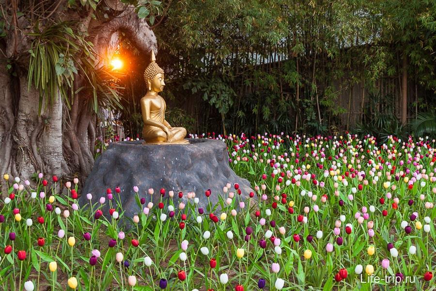На задворках Будда в окружении искусственных тюльпанов