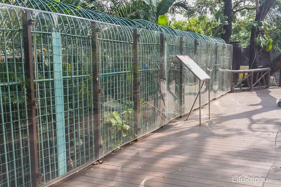 Двойные решетки и бликующие стекла - ничего не видно
