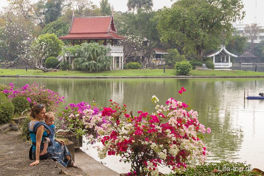 Я красивая сижу у красивого куста на фоне красивого домика