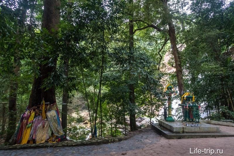 За деревьями видно водопад - тут начало ступенек