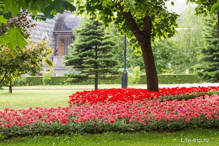 Просто газон около Храма Христа Спасителя и пух