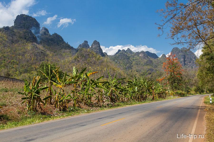 Красивая дорога ведет в Фанг