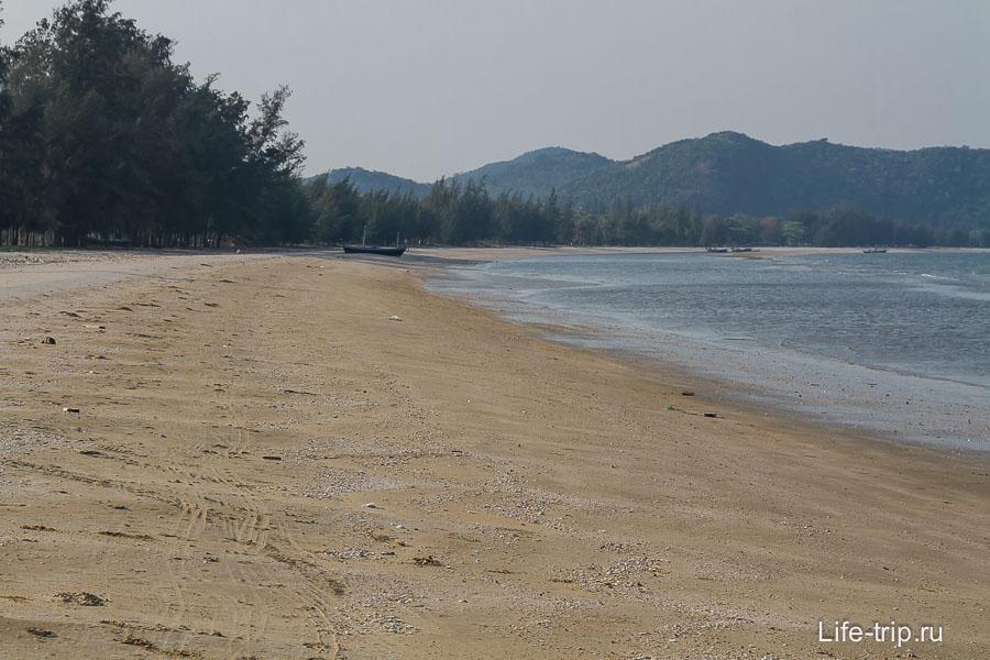 Пляж Dolphin Bay обрамлен соснами и пальмами