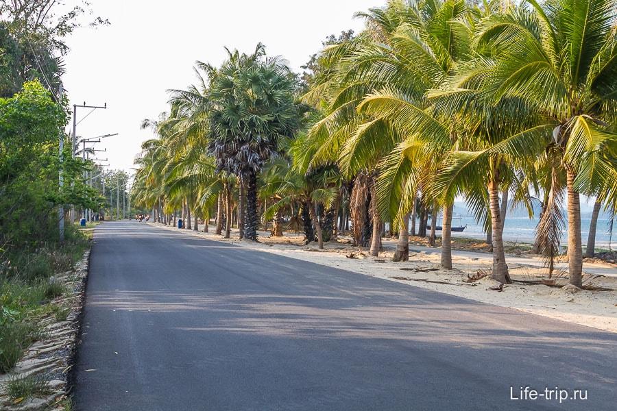 Не цивильная часть пляжа, только дорога, пальмы и почти никого