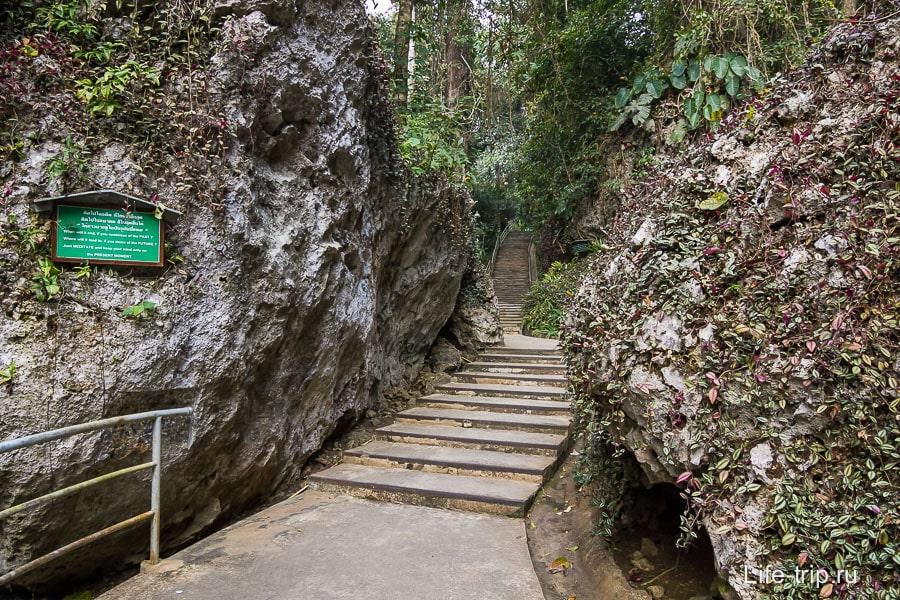 По дороге скалы и джунгли
