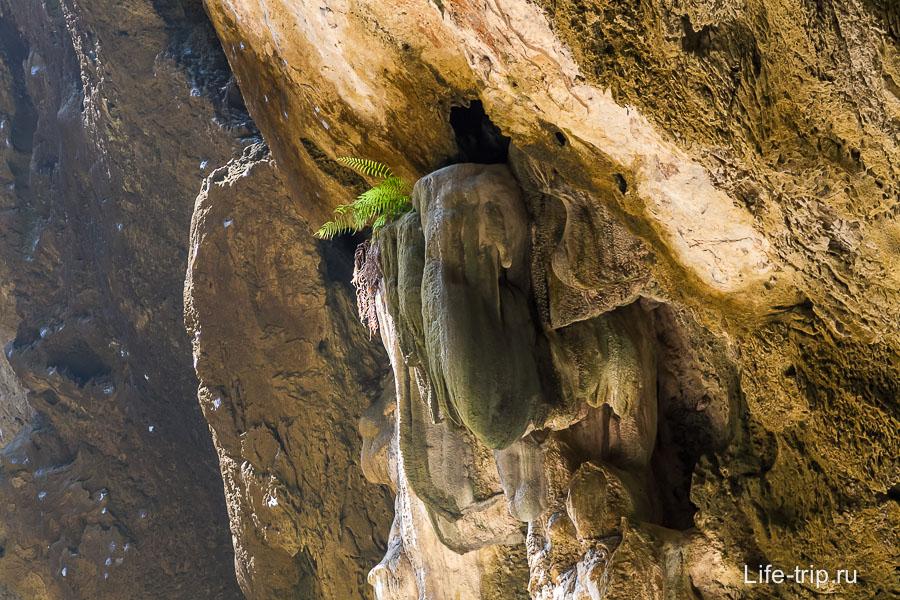 В пещере Phraya Nakhon есть сталактиты