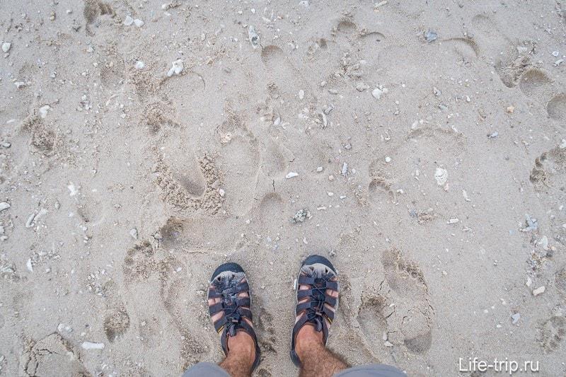 В полосе прибоя песок именно такой, с примесями