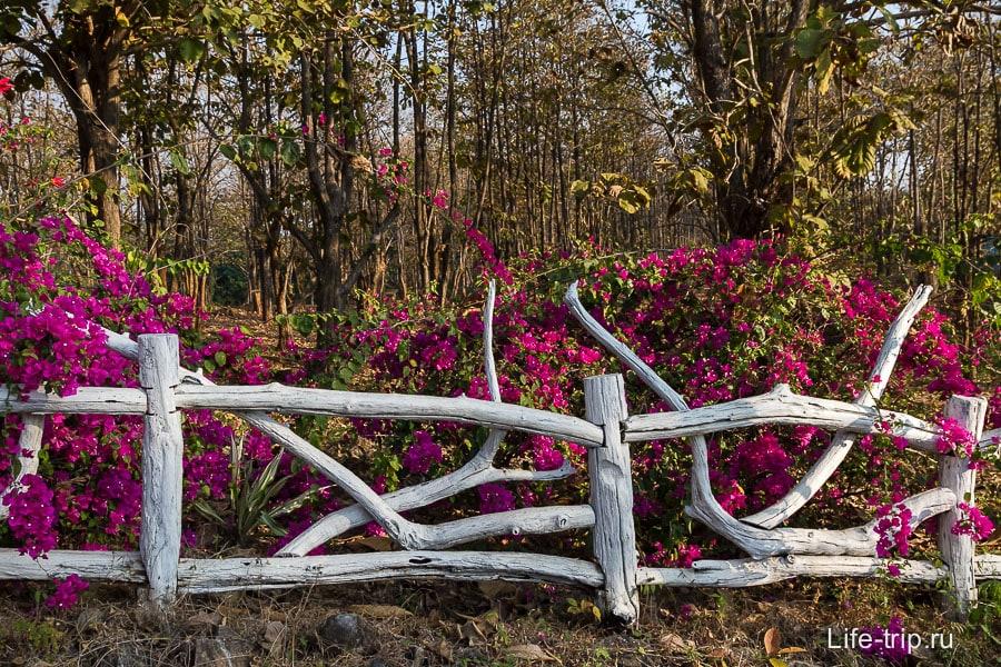 На трассе вот такой вот красивый забор