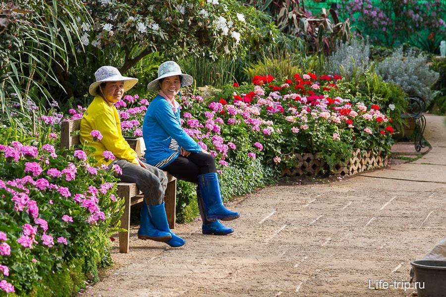 Работники парка в цветочном павильоне