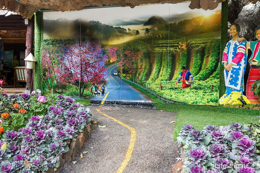 Вот так видится парк местным художникам