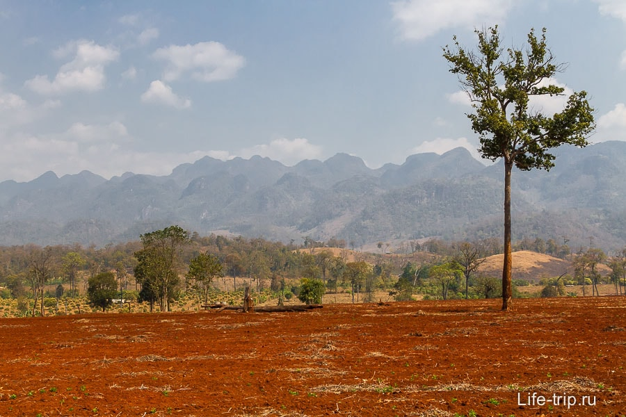 Красные поля на фоне гор - Мьянма