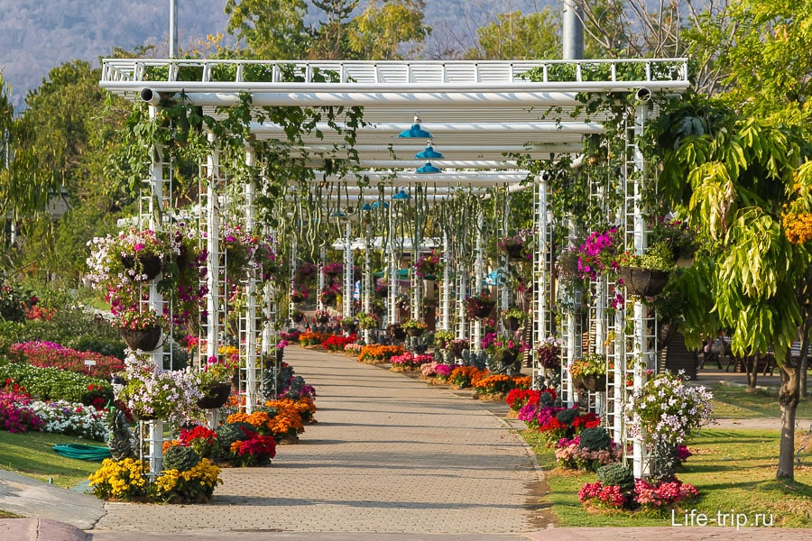 Цветочный коридор