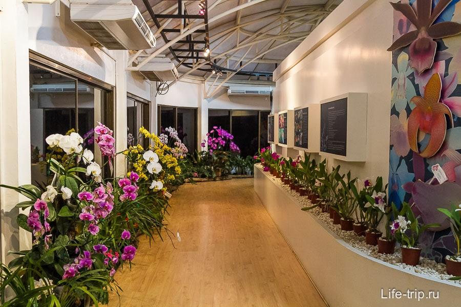 Павильон с орхидеями