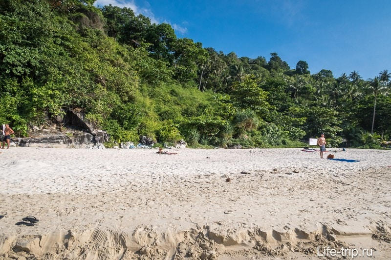Позади пляжа - сплошная стена джунглей.