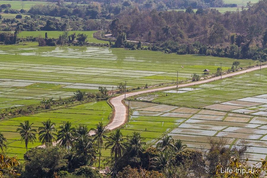 На приближении видны рисовые поля