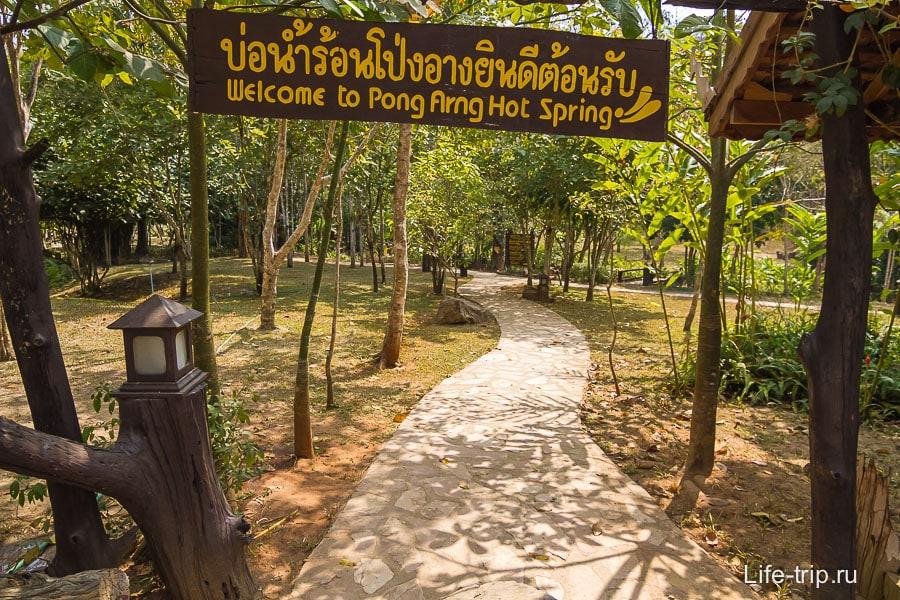 Горячие источники Pong Arng