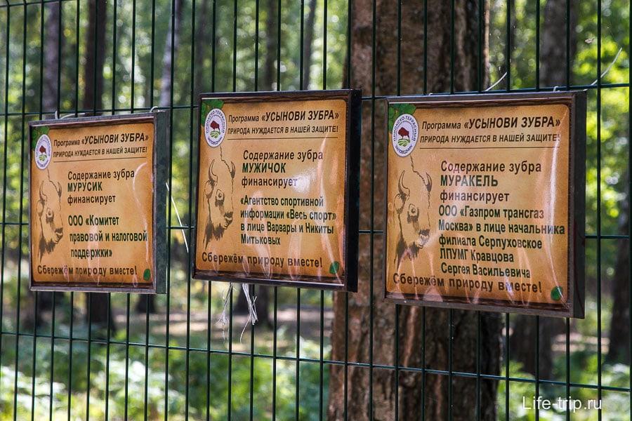 В России все зубры должны называть с МУ