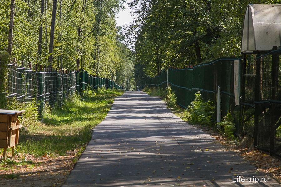 Дорога вдоль загонов внутри питомника