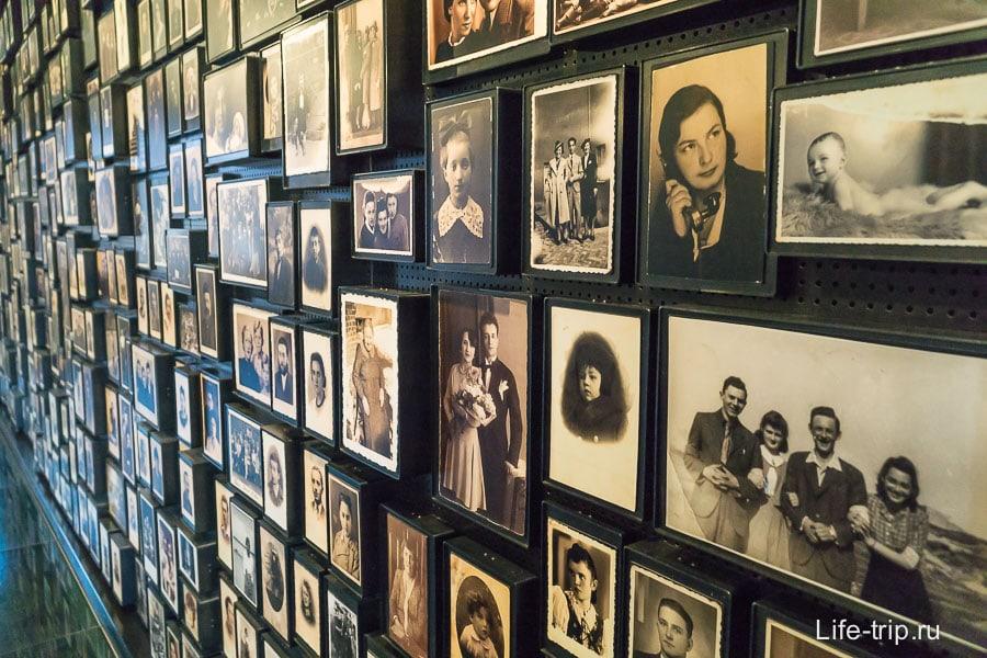 Стенды с большим количеством фотографий погибших