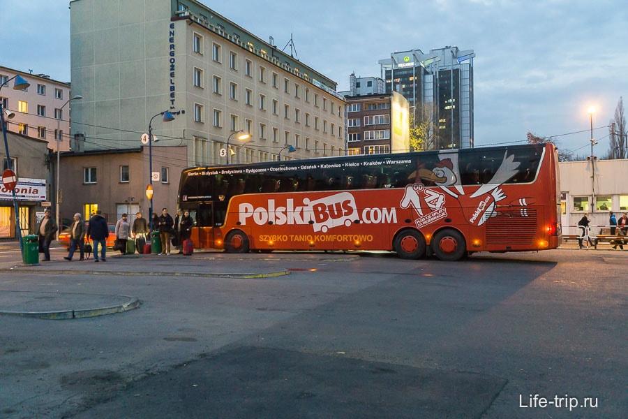 Недорогие польские автобусы Polskibus
