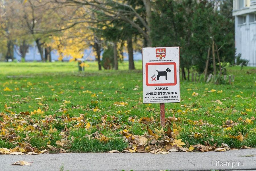 Собакам запрещено делать свои дела на газонах