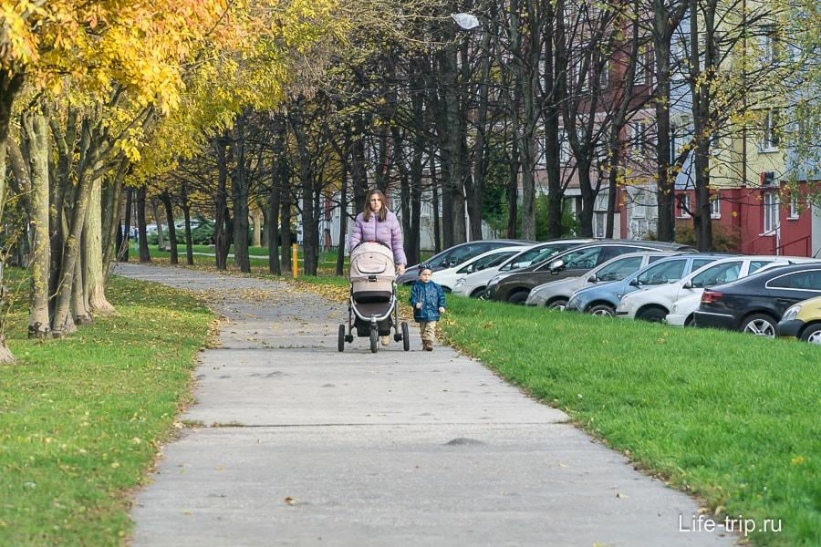 Очень много мам гуляющих с колясками