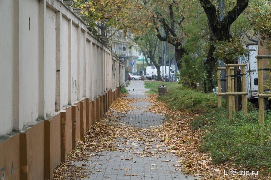 Обожаю листву на улицах