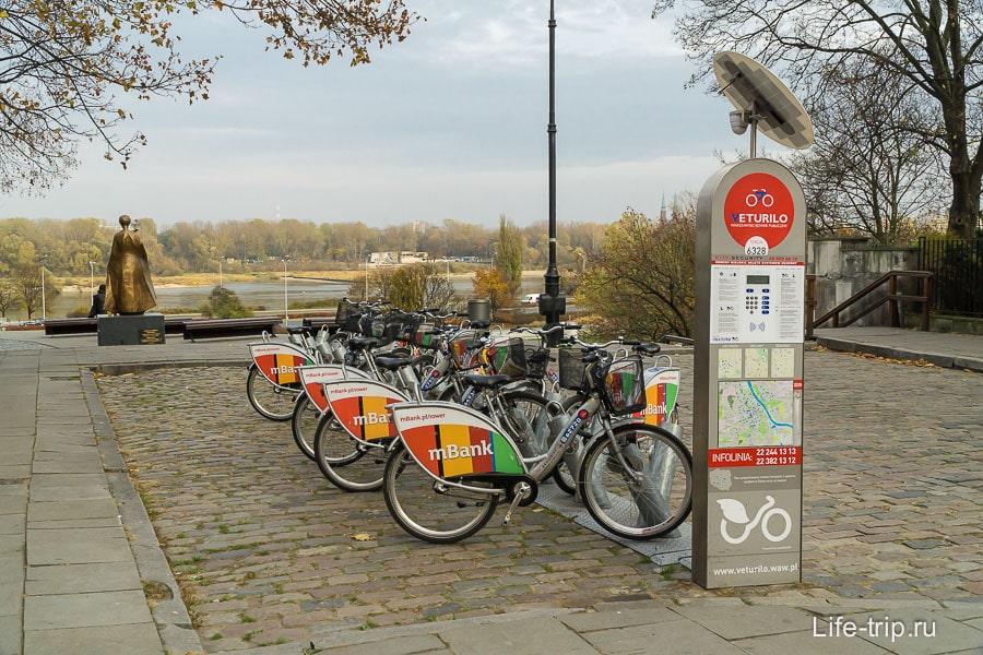По всему городу разбросаны пункты проката велосипедов