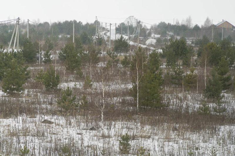Собственно, вот так и выглядит Славное - деревья и домики