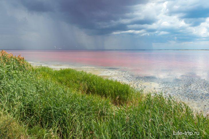 Озеро Сасык-Сиваш в Крыму