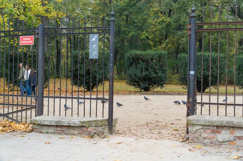 Один из входов в Лазенки, видим запрет на вело, роллеров и собак