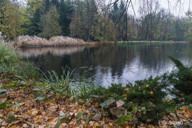 Один из прудов в парке
