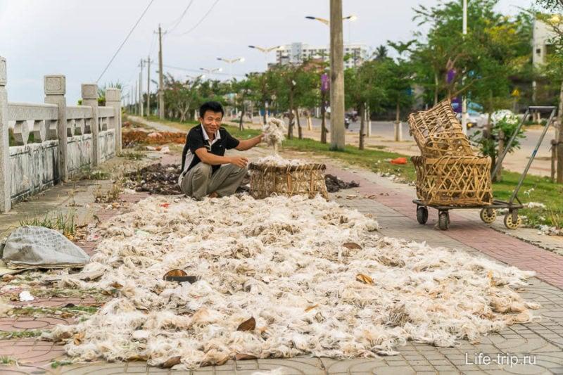 Китаец сушит перья птиц на набережной