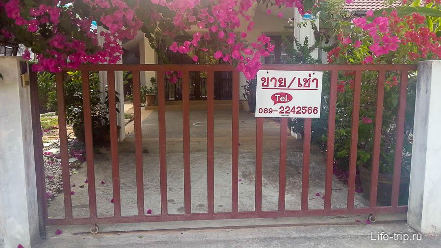 Надпись о аренде может быть и на тайском языке