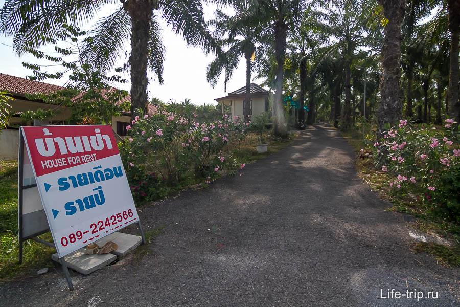 Табличка House for Rent указывает в переулок