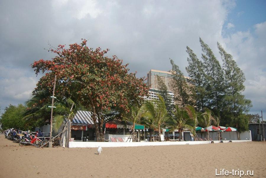 Кафе Мамма Мия и выход на пляж 18-й улицы