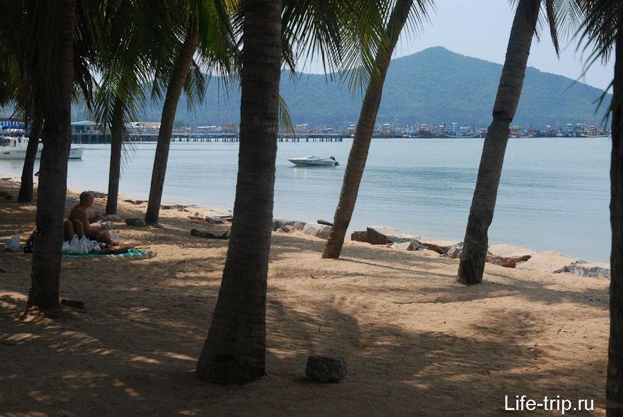 Пальмовая роща в Банг Сарай
