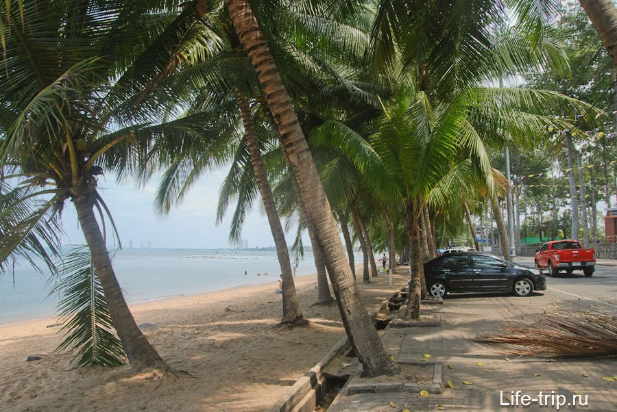 Пальмовая аллея вдоль пляжа у Walking Street