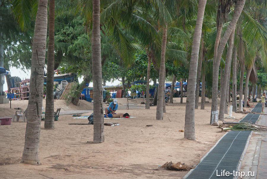 Коврики для массажа прямо под пальмами