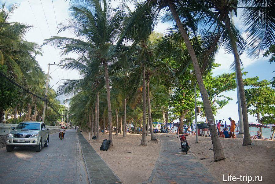 Пальмовая аллея вдоль пляжа