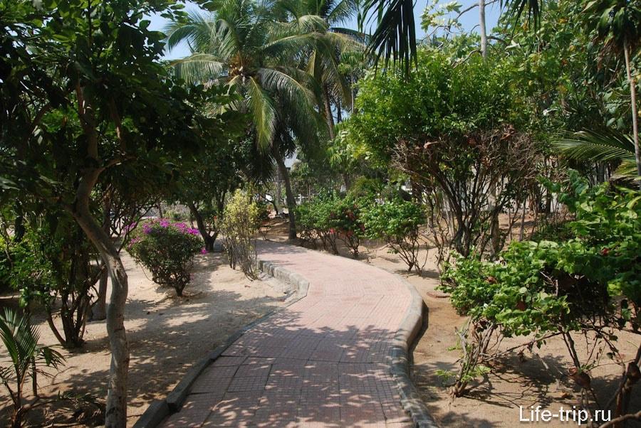 Дорожка вдоль пляжа в сторону Донгтана