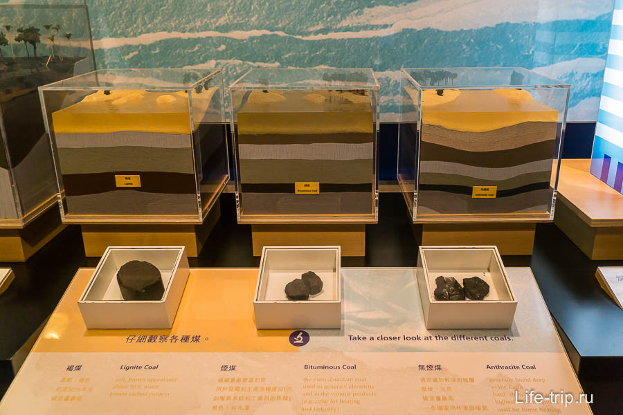 Разновидности угля и строение грунта