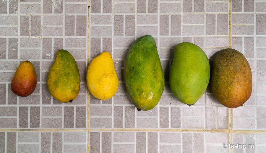 Ассортимент манго