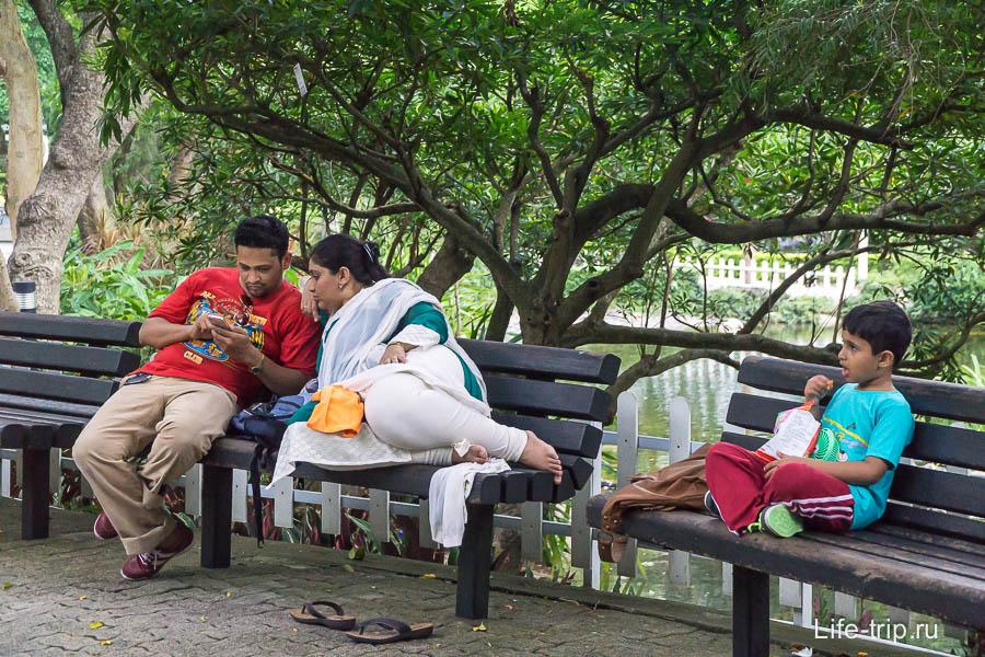 Посетители парка