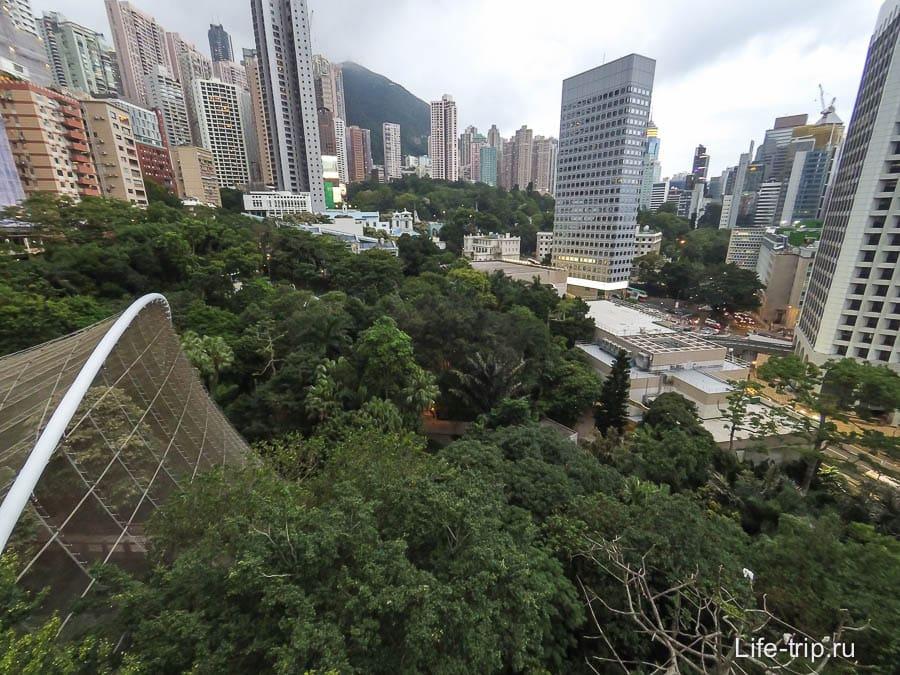Вид со смотровой в парке Гонконг