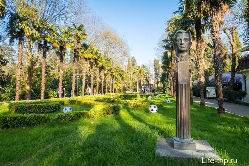 Парк Ривьера в Сочи - фото, аттракционы, карта