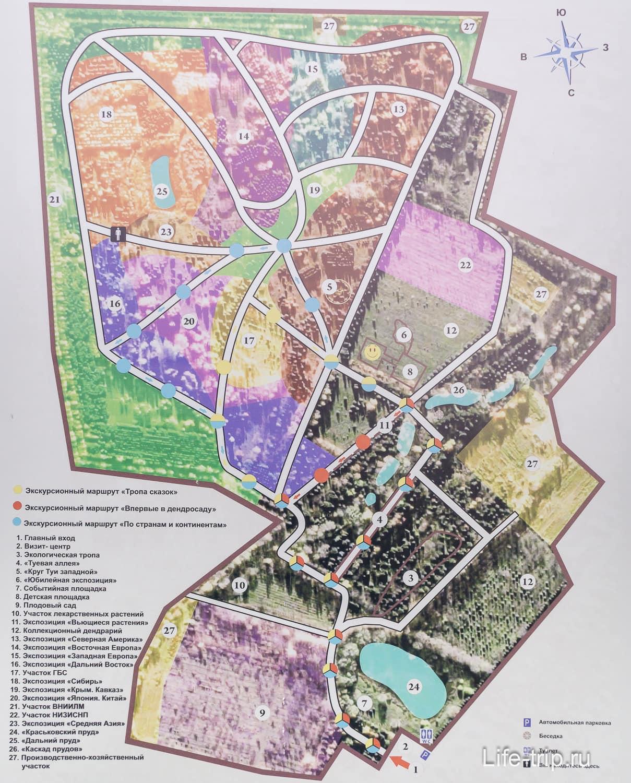 Карта дендропарка с зонами (кликабельно)