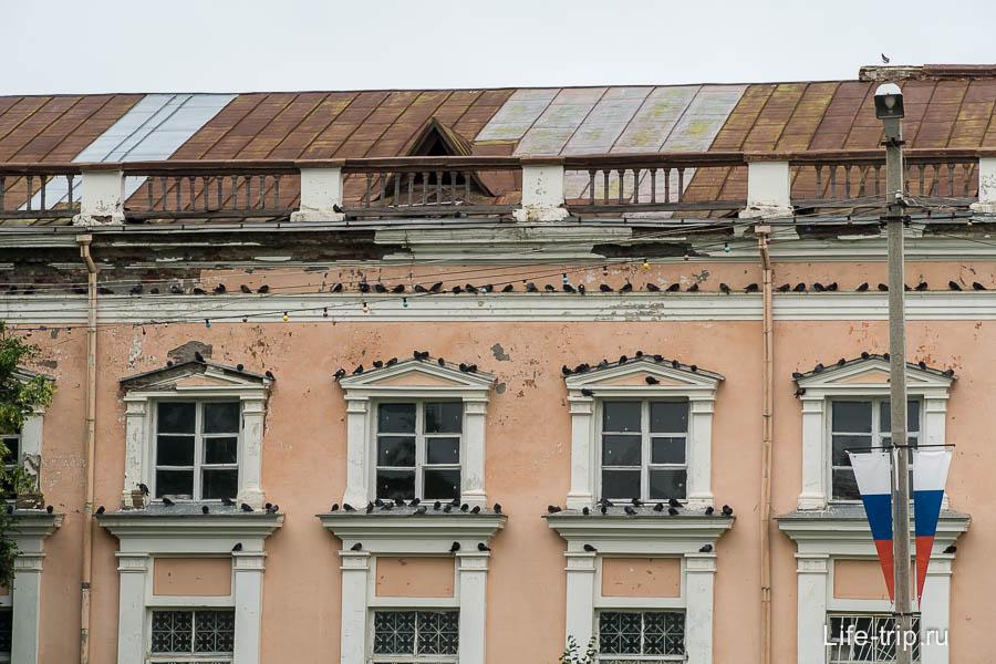 Здание облюбованное голубями