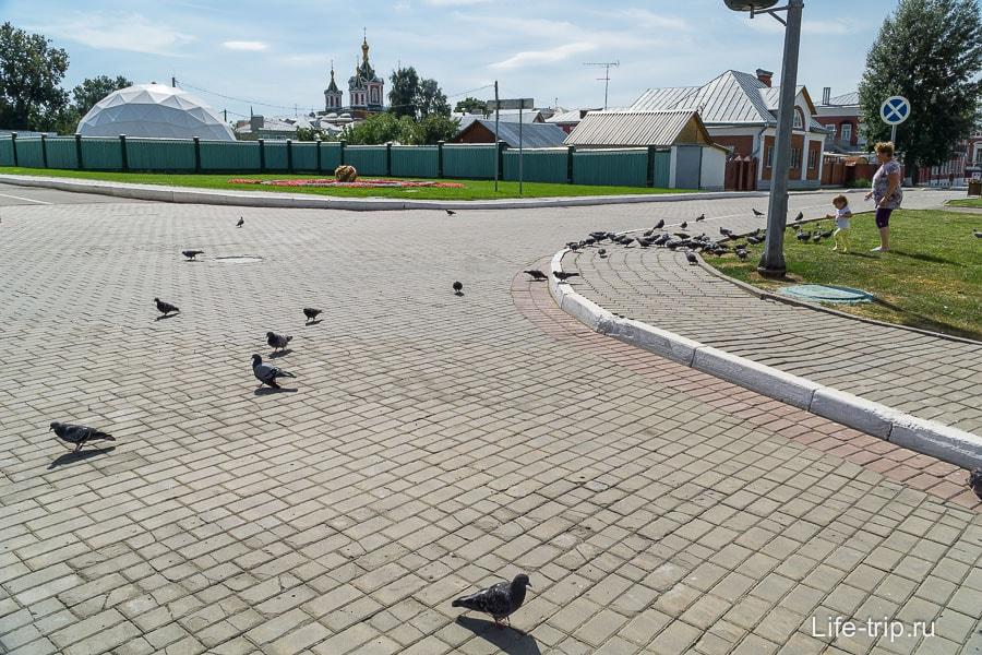 И дети гоняют голубей