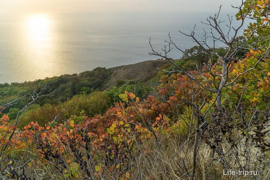 Осень приятное время - не жарко и появляется разнообразие красок